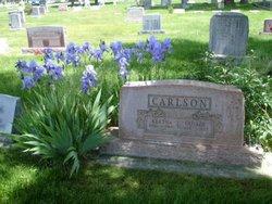 George Severin Carlson