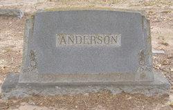 Ellen <I>Simms</I> Anderson