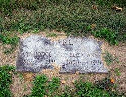 Elizabeth Ann Lizzie <I>Alvey</I> Harl