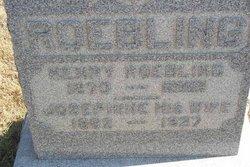Henry Roebling