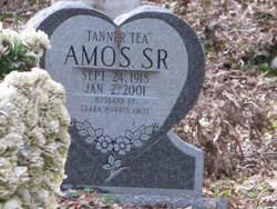 Tanner Tea Amos, Sr