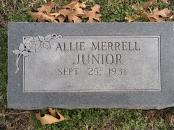 "Allie Willene ""Allie"" <I>Evans</I> Merrell/Junior"