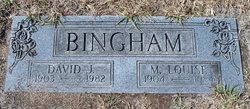 M Louise Bingham