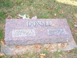 Melissa L Doxsee