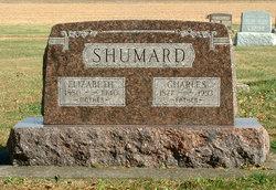 Elizabeth <I>Brandt</I> Shumard