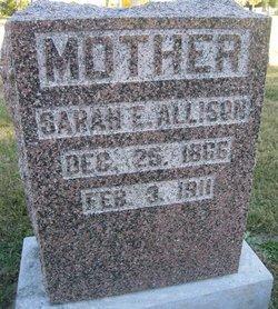 Sarah Elizabeth <I>Waddill</I> Allison