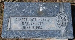Bennye Faye <I>Goelzer</I> Purvis