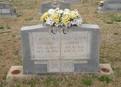 """Lyda """"Lottie"""" <I>Gwinn</I> Godfrey"""