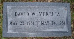 David W. Vukelja