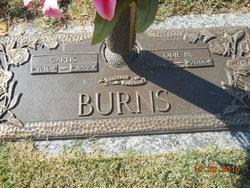 Odie M Burns