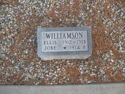 Ellis Williamson