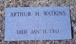 Arthur H Watkins