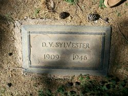 Delbert Vernon Sylvester