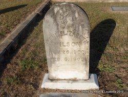 Irene Elizabeth Wilson