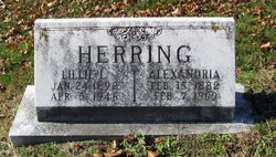 Alexandria Herring