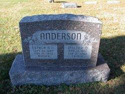 Walter M Anderson