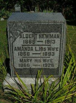 Amanda L <I>Elston</I> Newman