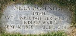 Niels R Rosenlof