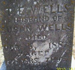 Thomas Edrington Wells
