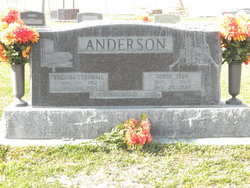 Virgil Leon Anderson