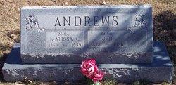 James Rollen Andrews