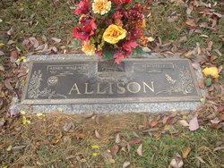 Abner Wallace Allison