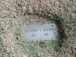 Anthony L Wilson