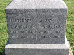 Alsay <I>McElfresh</I> Anderson