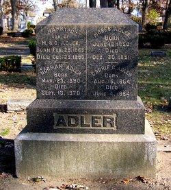 Moses Adler