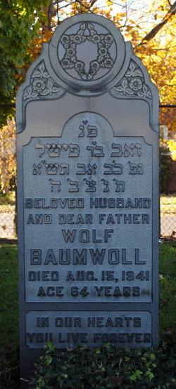 Wolf Baumwoll