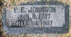 F.E. Johnson
