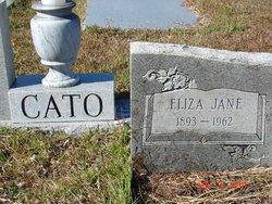 """Eliza Jane """"Liza"""" <I>Wetherington</I> Cato"""