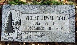 Violet Jewel <I>Birman</I> Cole