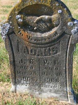 V. E. Adams