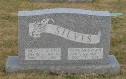 Olive <I>Mountain</I> Silvis
