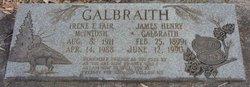 Irene Elizabeth <I>Fair</I> Galbraith