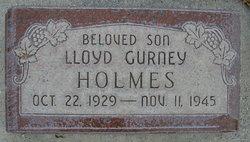 Lloyd Gurney Holmes