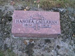 Hanora Eleanor <I>Fitzgerald</I> Callahan