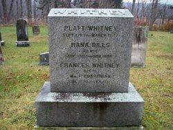 Frances Bills <I>Whitney</I> Boardman