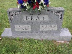 Cynthia Charlotte <I>Lindsey</I> Bray