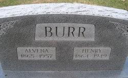 Alvena Burr