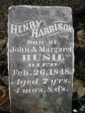 Henry Harrison Bush