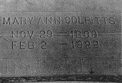 Mary Ann <I>Hudelson</I> Colpitts