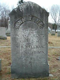 Ann Jane <I>Huntress</I> Wellman