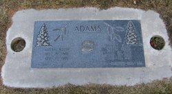 Alzina <I>Myler</I> Adams