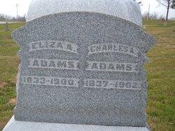 Eliza A <I>Peabody</I> Adams