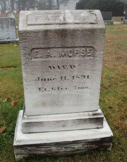 E. A. Morse