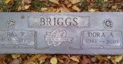 Dora Ann <I>Mouser</I> Briggs