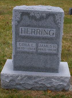 James H Herring