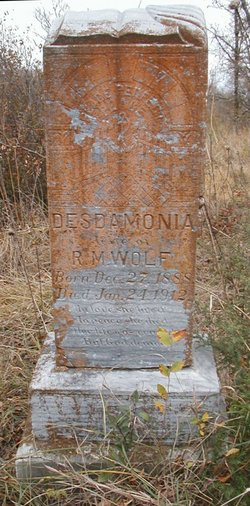 Desdamonia <I>Brown</I> Wolf